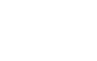 WSCAI 2015 Business Partner of the Year